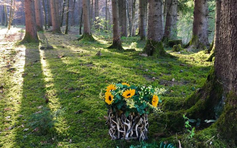 Eventbestattung - Baumbestattung im Wald der Ewigkeit